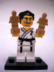 LEGO Minifigures Series 2 Karate Master
