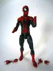 Hasbro Spider-Man Marvel Legends Infinite Series The Amazing Spider-Man 2