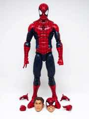 Hasbro Marvel Legends Series Spider-Man
