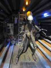 Toy Fair 2014 - NECA Alien and Aliens